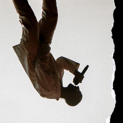 Afbeelding van Willem de Bruin over Man in Nood-tour