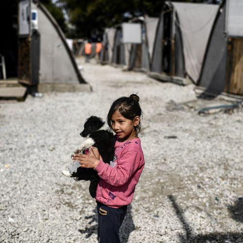 Afbeelding van Drie jaar na EU-Turkijedeal: hoe is de situatie op Lesbos?