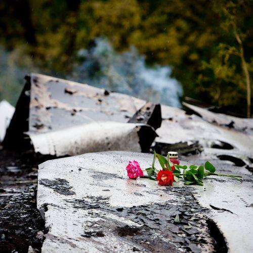 Afbeelding van Jacht op de MH17 daders | Terugkijktip